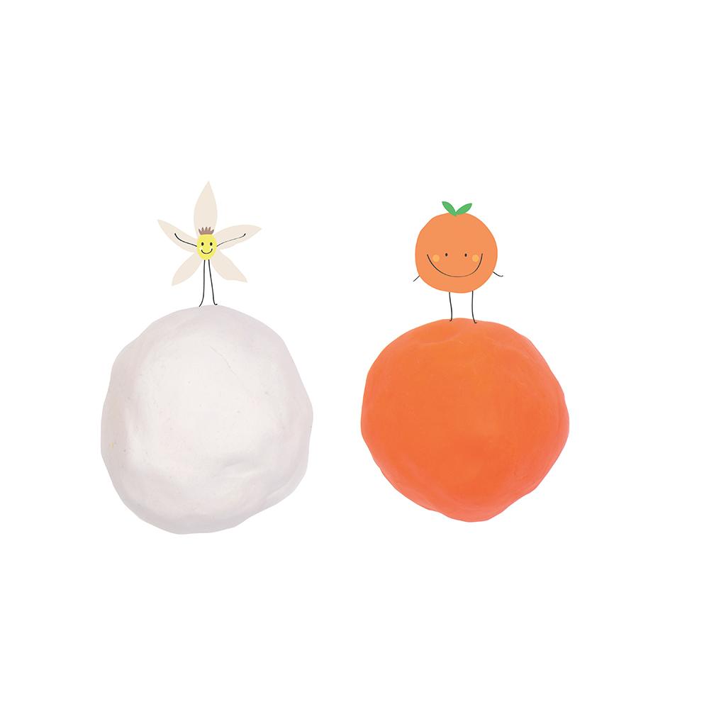 Tutti Frutti Renard - Buddies Boite Moyenne