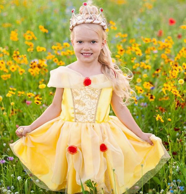 Robe de princesse - Belle