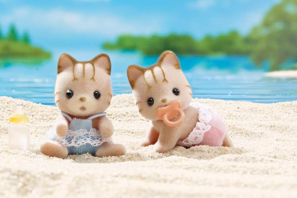 Calico - Jumeaux chats Sandy