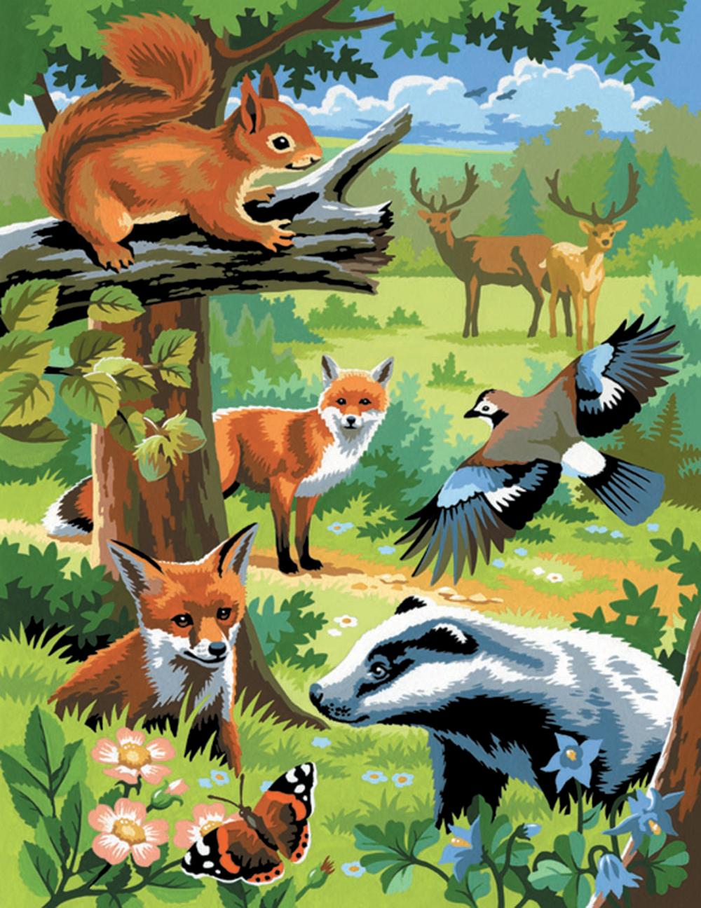 Peinture à numéros junior Ensemble de 2 - Animaux de la forêt
