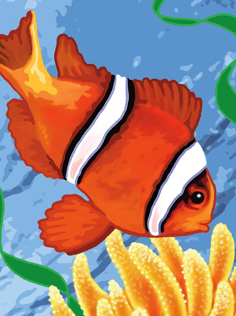 Peinture num ros poisson clown club jouet achat de for Achat poisson clown